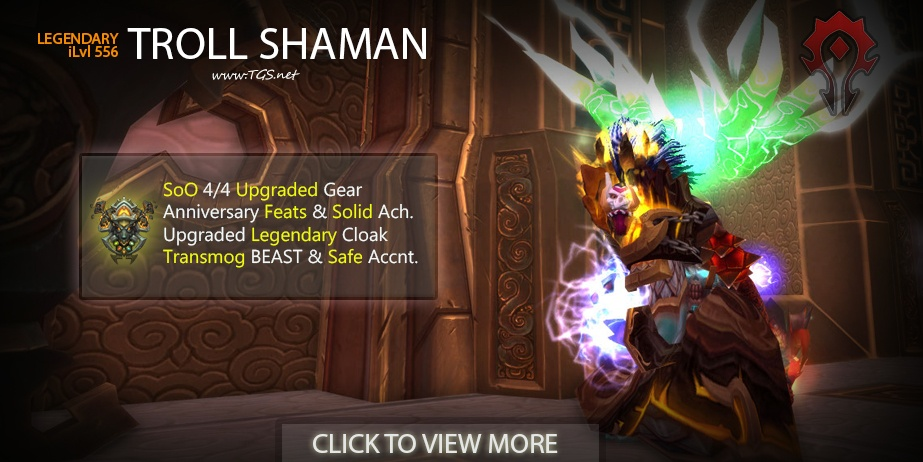 556 Legendary Shaman | Awesome Transmogs | Safe Account & MORE